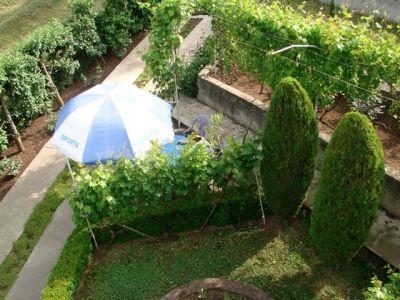 pogled sa terase.jpg