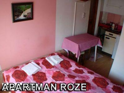 382_roze stud.jpg