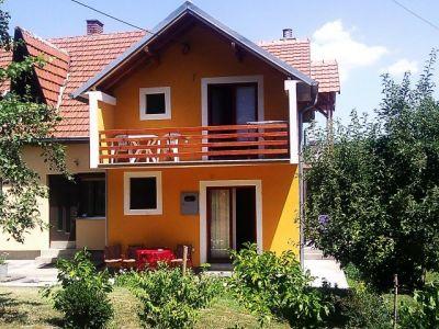 """Studio """"Nedeljković"""""""