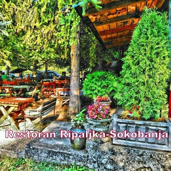 "Restoran ""Ripaljka"""